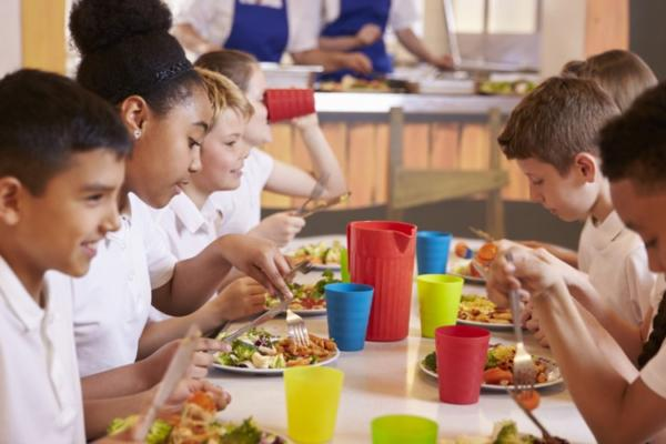 What Suggestions Do You Have for Improving Lunch at Your School? - Reedsws